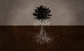 Abide Series Graphic